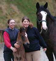 Filly by Enrico Caruso out of St.Pr.St. Tavolara by Exclusiv (1 day old) - with Sarah und Vicki